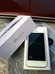 iphone5 white.jpg